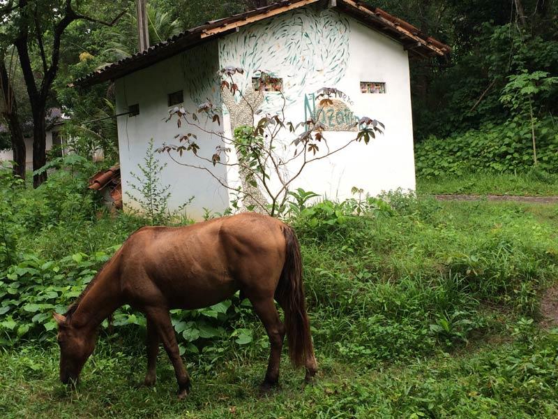 Projeto Brasil 2015: Der Eingang zum Kinderdorf